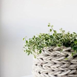 Arm Knit Basket-5862