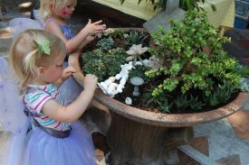 Fairy and Miniature Gardens