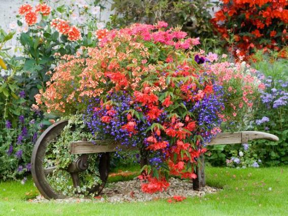 Magazine garden