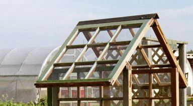 windowpane greenhouse