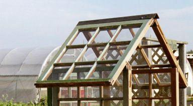windowpane greenhouse