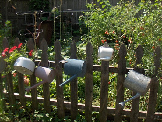 Joyce England's watering cans and kettle hanging on a picket fence