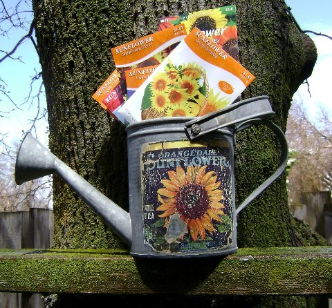 Upcycled Spring Photo Contest Prize.