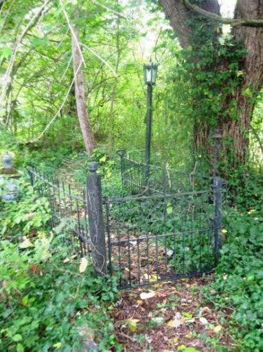 Gate to Mom's place...