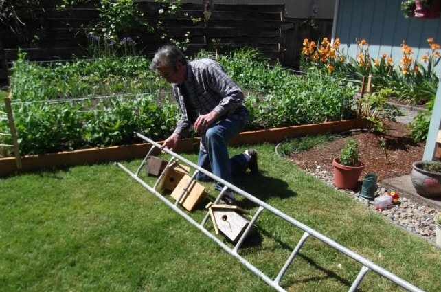 Barb Pawlik's husband working on her birdhouse ladder,...another project!