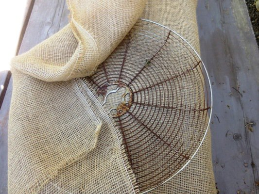Fan and burlap