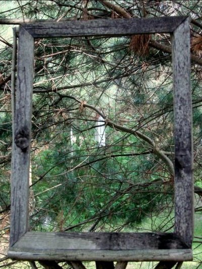 'Framed' birdhouse.  Can you see it?