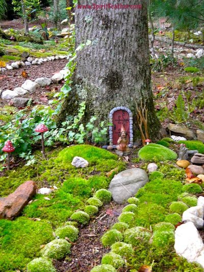 Anita Earnest's fairy door in a tree