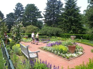 The gardens....