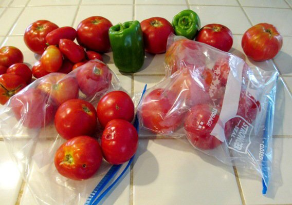 Freezing the harvest for sauce
