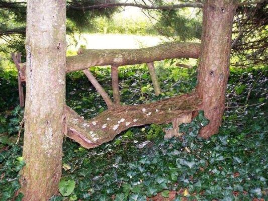 Myra Glandon's twig and log bench