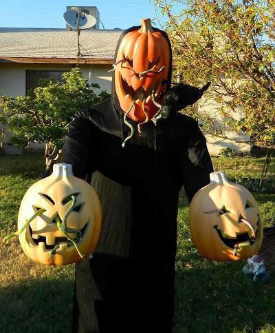 Brian Stephan's spooky, snaky pumpkins