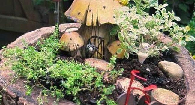 Jeanie's woodsy fairy garden