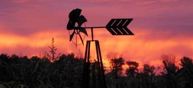 Whimsical weathervanes in the Flea Market garden