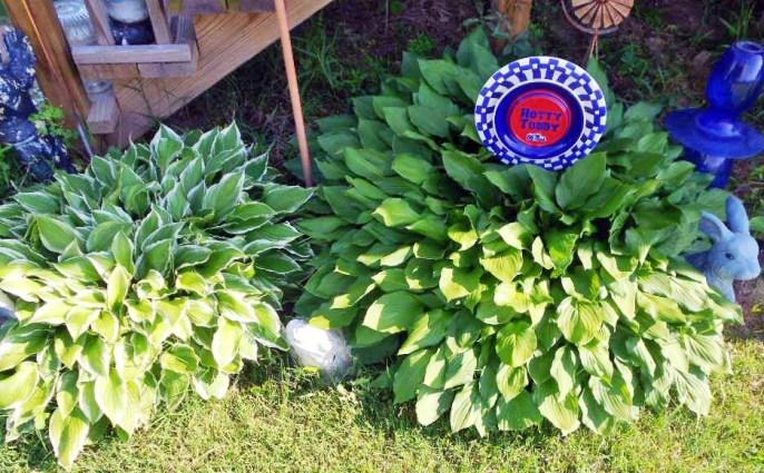 Funky Fusions Garden Art