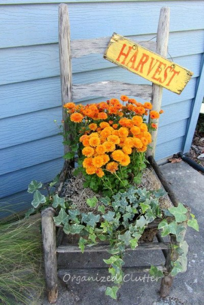 A harvest season chair planter mixes orange and cool blue.