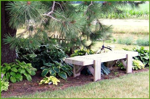 A serene spot in Nancy's garden