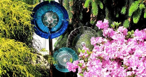 Dish flowers