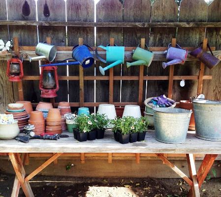 Jane Krauter's watering can collection