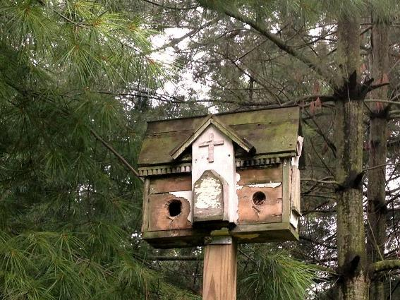 Myra Glandon's mossy green birdhouse