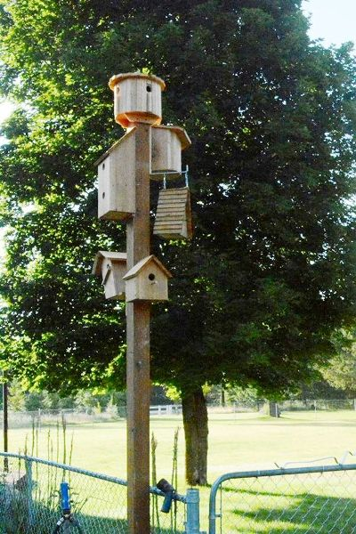 Rita Michalak offers many choices with her bird condo