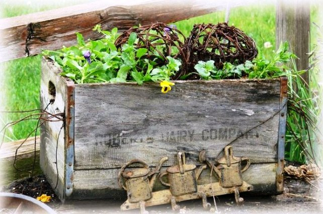 Jeanne Sammons's wooden crate