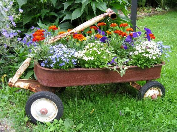Shea Ricci's classic wagon