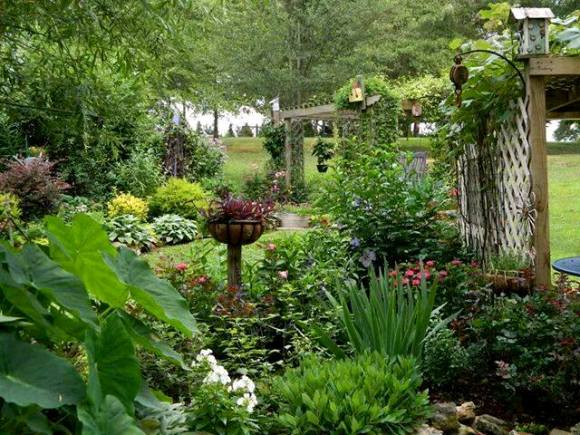 The garden goes vertical with arbors and trellises