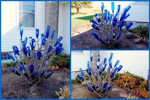 Nancy K. Meyer's burning bush in Winter