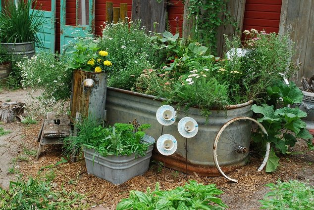 Jill Ruskamp's tank garden