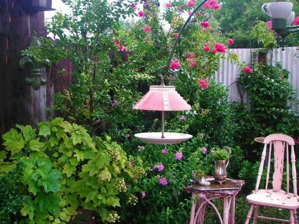 Ceiling fixture bird feeder