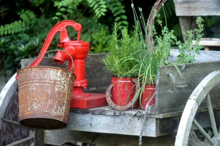 Vintage pumps in the garden: A gallery