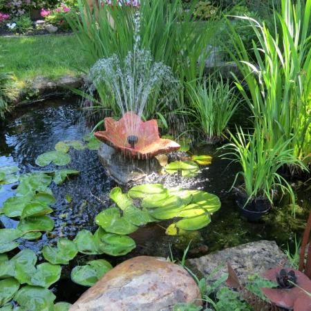 A delightful self made pond in the center of the gardens home fish, frogs, fountains and flowers...