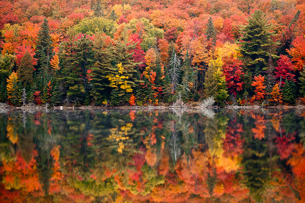 King Falls Am Wallpaper Top 5 Places In Ontario To See Fall Colours