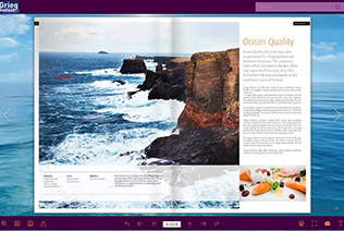 Flash Brochure Software, Create Stunning Flash Brochure with Video