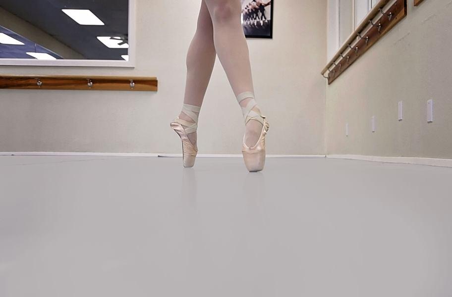Rosco Dance Floor High Quality Temporary Dance Floor Rolls