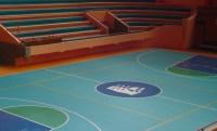 Sportex, PVC sport vinyl floorings in rolls