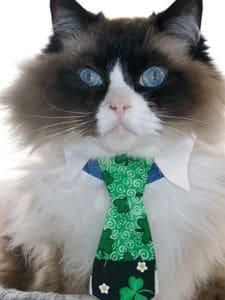 Customer, Rufus, in Necktie