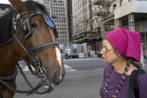NYC Carriage Horse and Catherine Ferguson