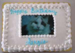 Sergio's Birthday Cake