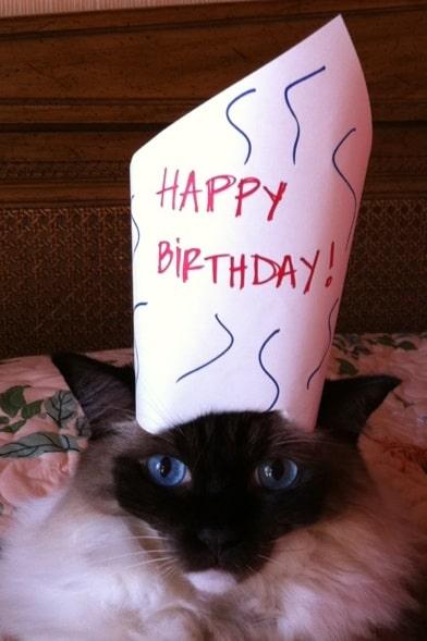 Caymus Birthday 2011 - 7