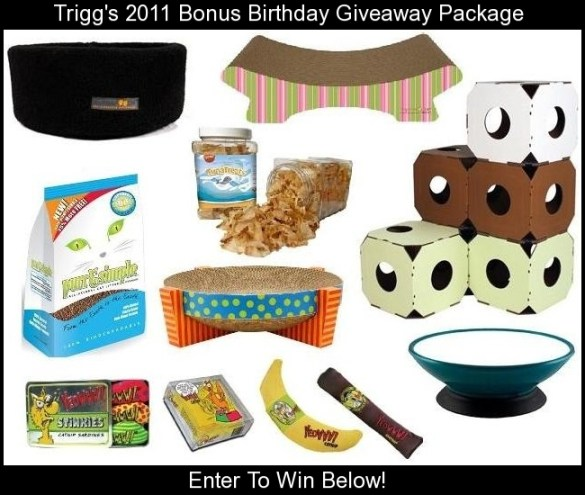 Trigg Birthday Giveaway 2011 Package