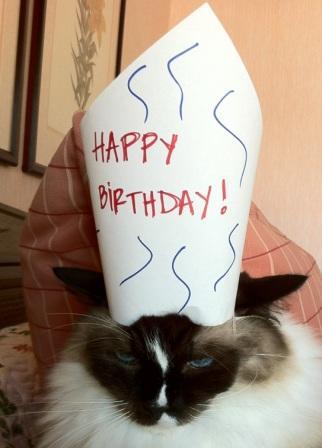 Happy Birthday Murphy