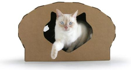 Kittypod Dome