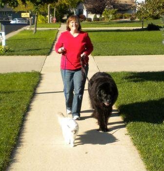 Mulsanne and Jewel walking - submitted by Karen
