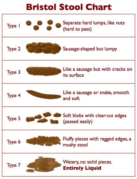 Figure 1. A normal stool is Type 4; anything below that is moving toward constipation.