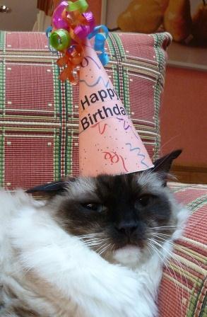 Caymus 8th Birthday August 20122