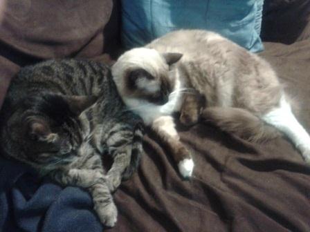 Dakota and Oliver
