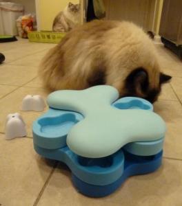 Nina Ottosson Dog Tornado Cat Puzzle Toy