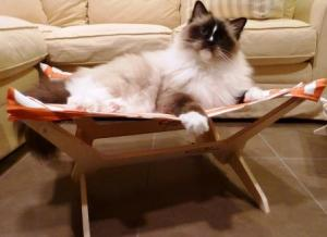 Peach Industries The Ultimate Cat Hammock with Charlie